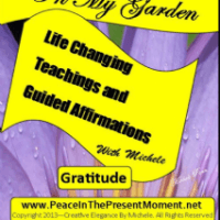 Gratitude Affirmations and Teachings by Michele Penn