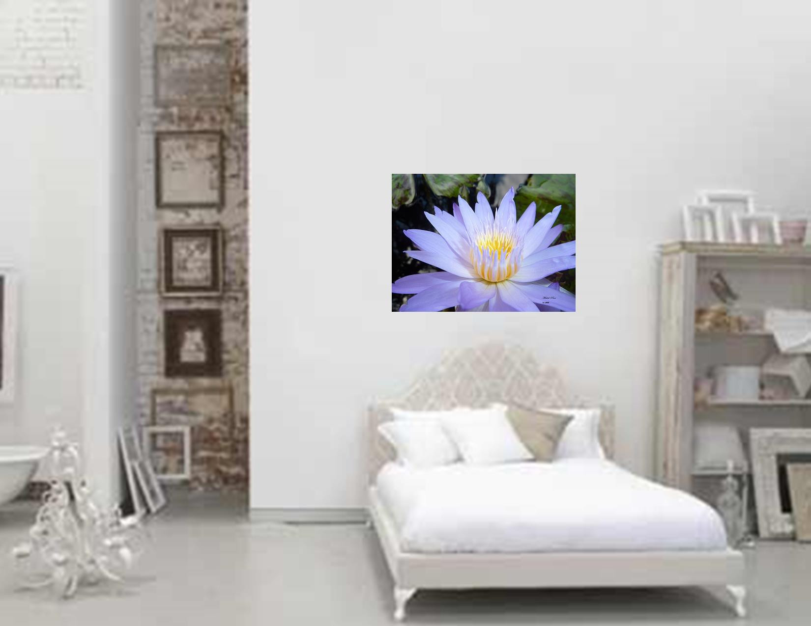 gallery new buttercup bliss