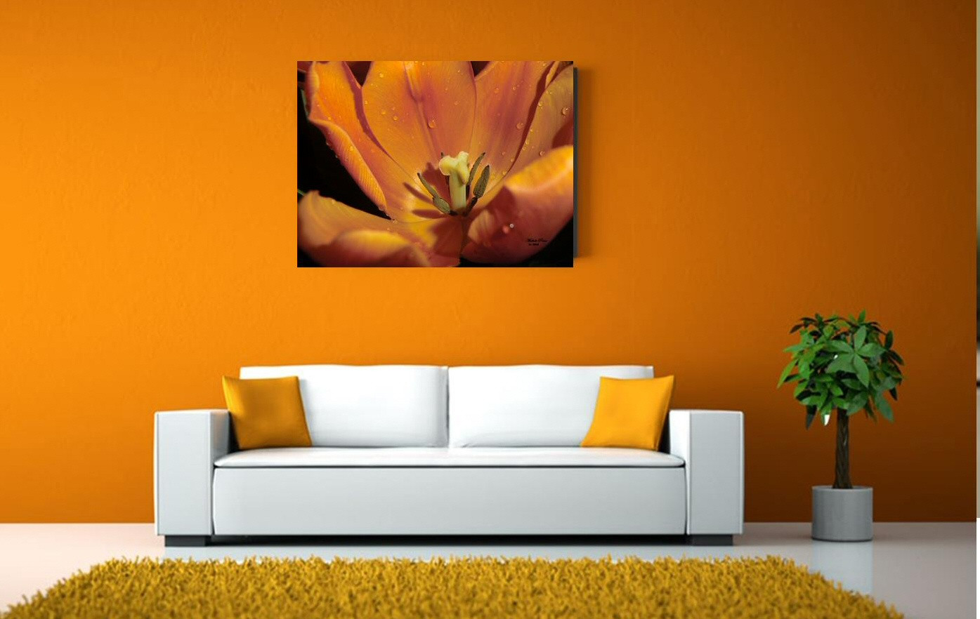 gallery orange transformation canvas (2) cropped